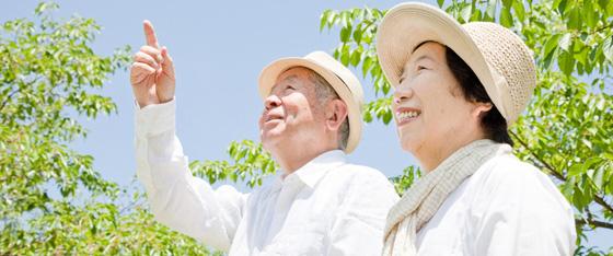 Okinawa hay Thực dưỡng?