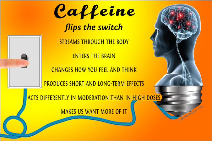 how caffeine works 675