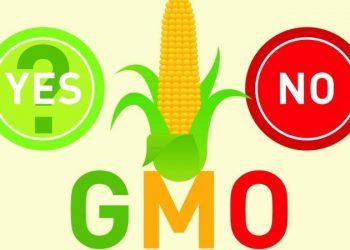 Hiểu Về GMO Và Thực Phẩm Biến Đổi Gene – Kỳ 1: GMO Là Gì?