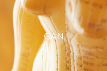Gan & Sức Khỏe Phụ Nữ