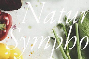Nature Symphony – Nghệ Thuật Từ Thiên Nhiên