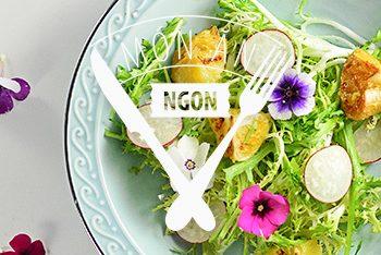 Salad Hoa Cam