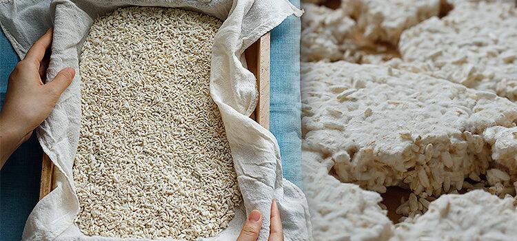 Hướng Dẫn Tự Làm Mốc Gạo Koji Tại Nhà